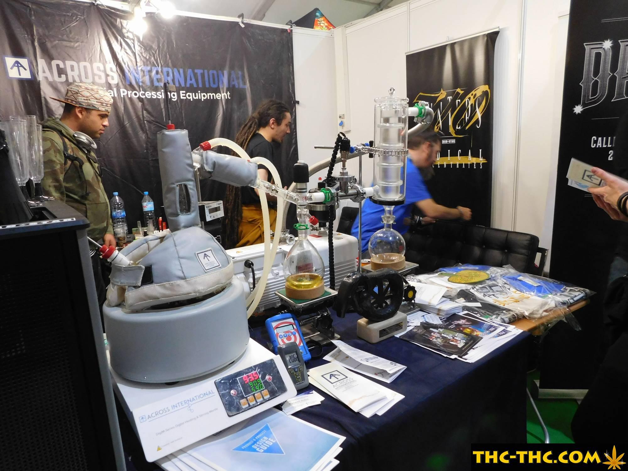 spannabis barcelona 2019
