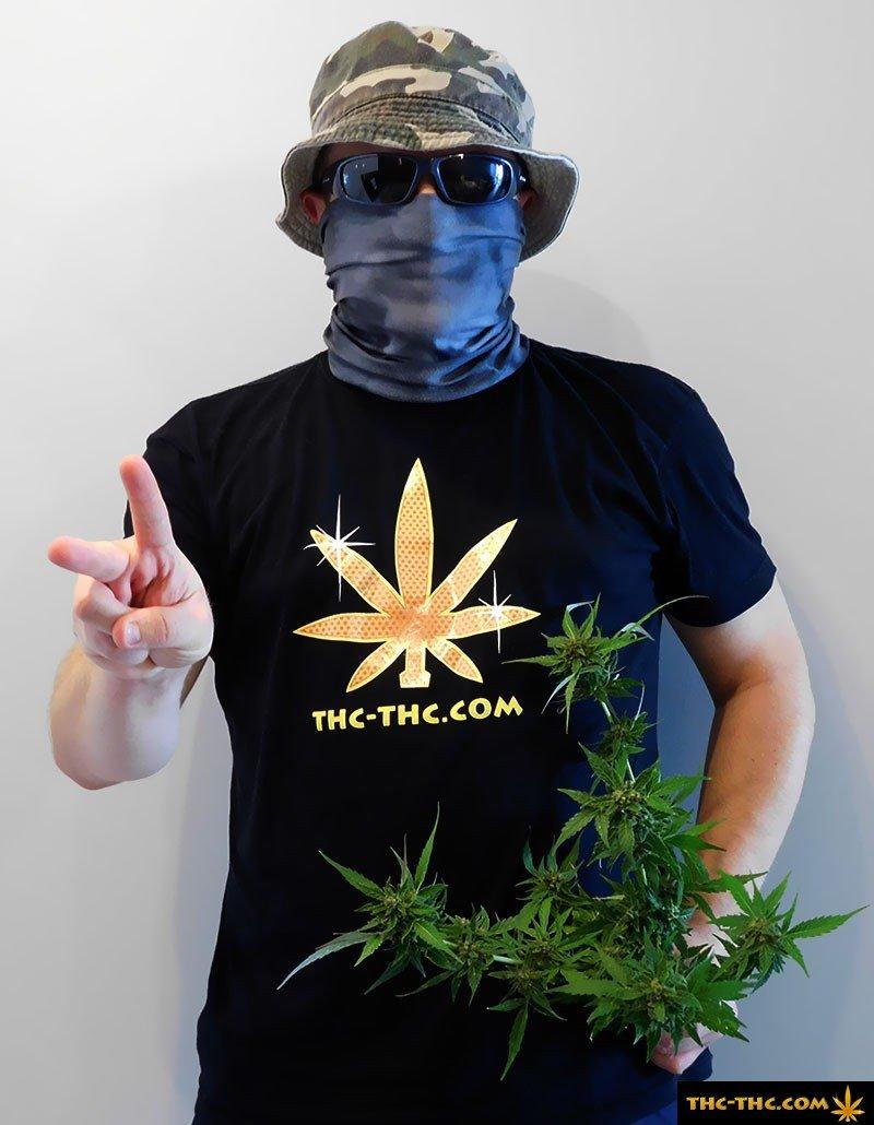 Marihuana – Relacje, Filmy, Wydarzenia – THC TV